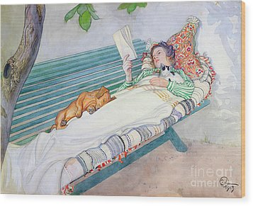 Woman Lying On A Bench Wood Print by Carl Larsson