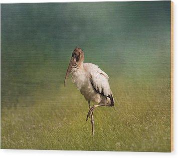 Wood Stork - Balancing Wood Print by Kim Hojnacki