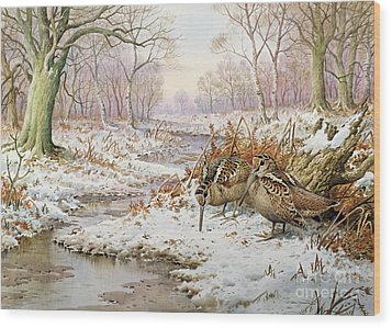 Woodcock Wood Print by Carl Donner