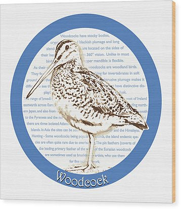 Woodcock Wood Print by Greg Joens