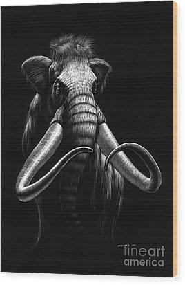Woolly Mammoth Wood Print by Stanley Morrison