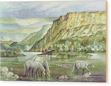 Ws2000dc023 Landscape Bolivia 18x12 Wood Print by Alfredo Da Silva