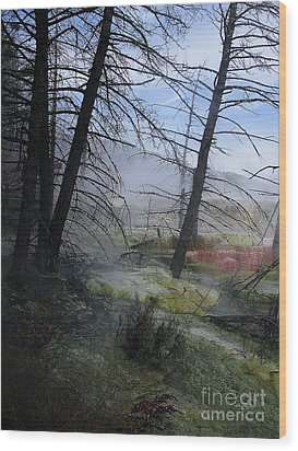 Yellowstone National Park 4 Wood Print by Xueling Zou