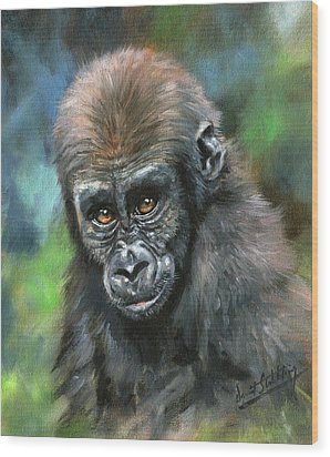 Young Gorilla Wood Print by David Stribbling