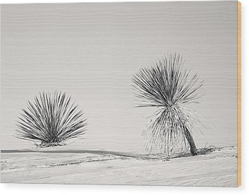 yucca in White sands Wood Print by Ralf Kaiser