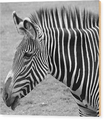 Zebra - Here It Is In Black And White Wood Print by Gordon Dean II