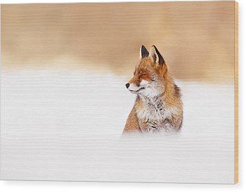 Zen Fox Series - Zen Fox In Winter Mood Wood Print by Roeselien Raimond