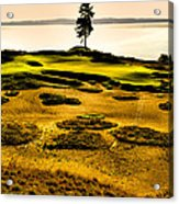 #15 At Chambers Bay Golf Course - Location Of The 2015 U.s. Open Tournament Acrylic Print by David Patterson