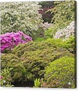 Asticou Azelea Garden - Northeast Harbor - Mount Desert Island - Maine Acrylic Print by Keith Webber Jr