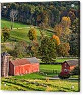 Autumn Light Acrylic Print by Bill Wakeley