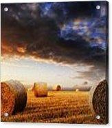 Beautiful Hay Bales Sunset Landscape Digital Painting Acrylic Print by Matthew Gibson
