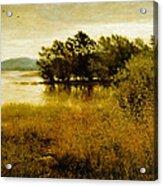 Chill October Acrylic Print by John Everett Millais