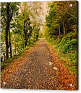 Country Lane Acrylic Print by Adrian Evans