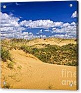Desert Landscape In Manitoba Acrylic Print by Elena Elisseeva