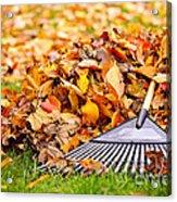 Fall Leaves With Rake Acrylic Print by Elena Elisseeva