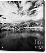 Flooded Grasslands And Mangrove Forest In The Florida Everglades Usa Acrylic Print by Joe Fox