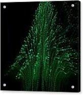 Green Tree 2 Acrylic Print by Jeffrey J Nagy