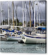 In The Harbor Acrylic Print by Cheryl Young