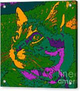 Jungle Cat Acrylic Print by Hanza Turgul