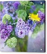 Lilacs In Vase 3 Acrylic Print by Rebecca Cozart