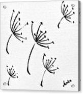 Make A Wish Acrylic Print by Marianna Mills