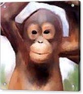 Monkey Business Acrylic Print by Karen Larter