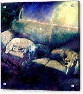 Nap Time Dreams Acrylic Print by YoMamaBird Rhonda