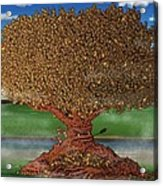 The Lending Tree Acrylic Print by Paul Calabrese
