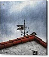 Weathered Weathervane Acrylic Print by Carol Leigh