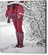 Winter... Acrylic Print by Renata Vogl