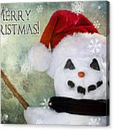 Winter Snowman Acrylic Print by Cindy Singleton
