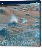 Winters Dunes IIa Acrylic Print by Suzanne Gaff