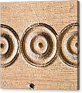 Wood Carving Acrylic Print by Tom Gowanlock