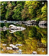 Williams River Autumn Acrylic Print by Thomas R Fletcher