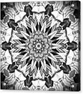 1800 10 Acrylic Print by Brian Johnson