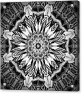 1800 13 Acrylic Print by Brian Johnson