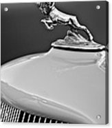 1933 Dodge Ram Hood Ornament 2 Acrylic Print by Jill Reger