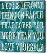 A Dog Acrylic Print by Debbie DeWitt