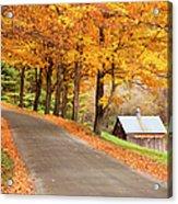 Autumn Road Acrylic Print by Brian Jannsen