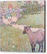 Baa Baa Black Sheep Acrylic Print by Leonard Leslie Brooke