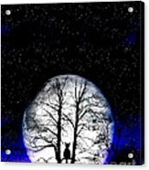 Black Cat On Tree Acrylic Print by Nina Ficur Feenan