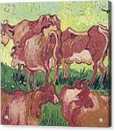 Cows Acrylic Print by Vincent Van Gogh
