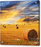 Golden Sunset Over Farm Field With Hay Bales Acrylic Print by Elena Elisseeva