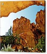 Juniper Gulch Oregon Acrylic Print by Ed  Riche
