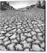 Long Walk Acrylic Print by Mike McGlothlen