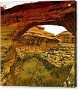 Natural Bridge Acrylic Print by Jeff Swan