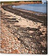 Prince Edward Island Coastline Acrylic Print by Elena Elisseeva