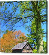 Puckett's Cabin Acrylic Print by Paul Johnson