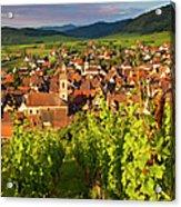 Riquewihr Alsace Acrylic Print by Brian Jannsen