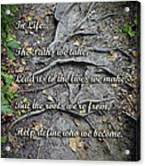 Roots Acrylic Print by Brian Wallace